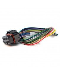 Link ECU B Loom Short - 0LB