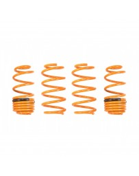 ARK Performance Honda Fit (07-13) 1.5L GT-F Lowering Springs