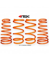 ARK Performance Hyundai Tiburon 2.0L/2.7L GT-F Lowering Springs (03-08)