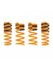 ARK Performance Infiniti G37 Coupe 3.7L, RWD GT-F Lowering Springs (08-13)