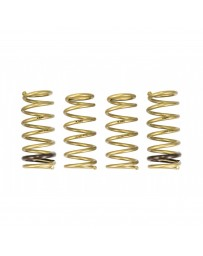 ARK Performance Honda S2000 2.0L/2.2L GT-S Lowering Springs (00-09)