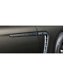 Artisan Spirits Sports Line ARS Door Molding Garnish (FRP) - Porsche Panamera Turbo 970CWBA 2009-2014