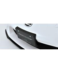 Artisan Spirits Black Label Number Plate Base (FRP) - Lexus LFA 2011
